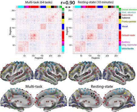 The Cole Neurocognition Lab